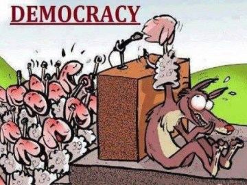 fake_democracy2