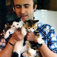 Phil Collins With A Cat