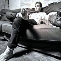 Music Legends With Cats: Nicolas Jaar