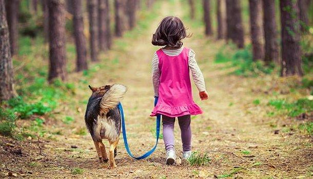 """""""Dê seu coração a um cão, e ele lhe dará o dele"""""""