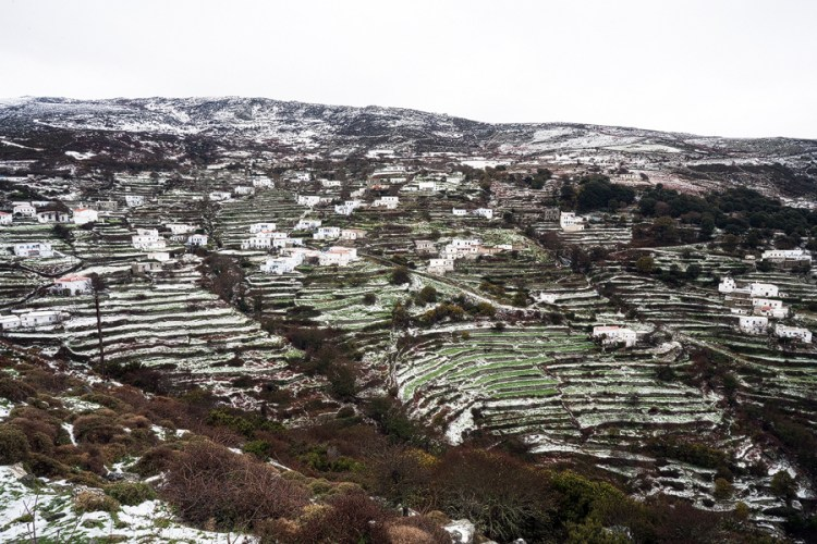Snow on Andros, 1/1/16.