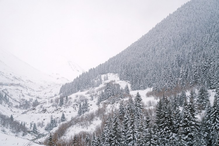Snow stops play, south of Trabzon.