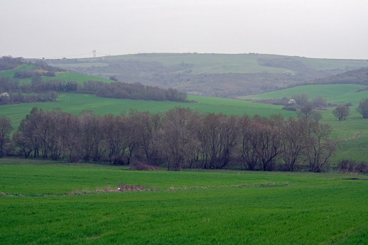 The green hills of Turkish Thrace, largely converted to agriculture.