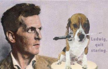 Beagle_Wittgenstein_530