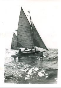 DaisyR-c1940