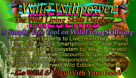 WildLivingSkills business card green