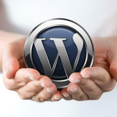 WordPress-in-hands