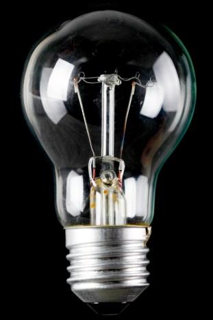 Bulb (1)