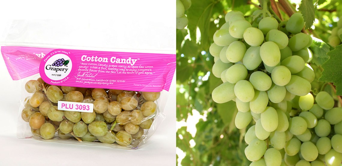 Cotton Candy Grapes by Grapery Ripleys Wide Bar