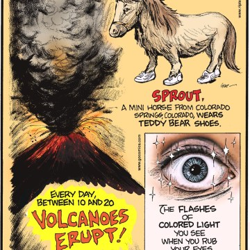 Every day, between 10 and 20 volcanoes erupt! -------------------- Sprout, a mini horse from Colorado Springs, Colorado, wears teddy bear shoes. -------------------- The flashes of colored light you see when you rub your eyes are called phosphenes.