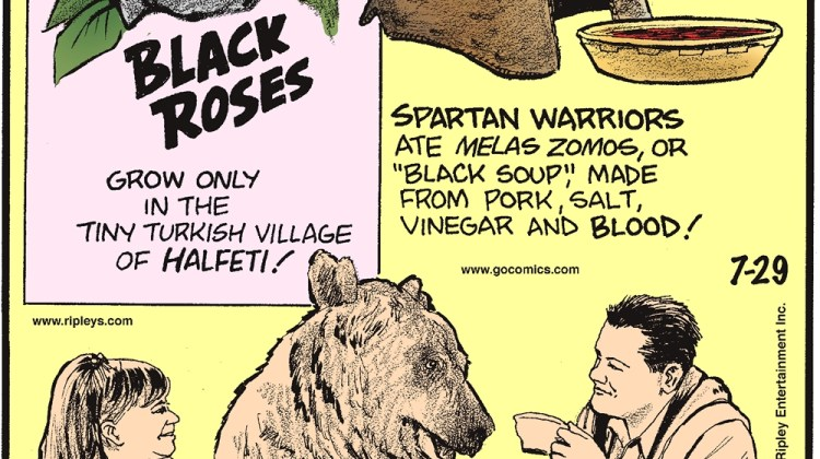 """Black roses grow only in the tiny Turkish village of Halfeti! -------------------- Spartan warriors ate melas zomos, or """"black soup,"""" made from pork, salt, vinegar, and blood! -------------------- Russian couple Svetlana and Yuriy Panteleenko share their home with Stephan, a tamed bear that weighs over 300 pounds!"""