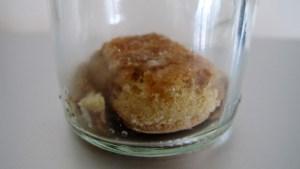 Unterste Schicht Löffelbiscuits in Weck Glas