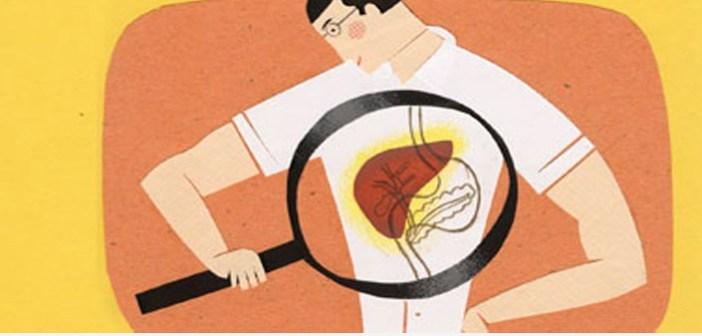 liver تنظيف الكبد من السموم