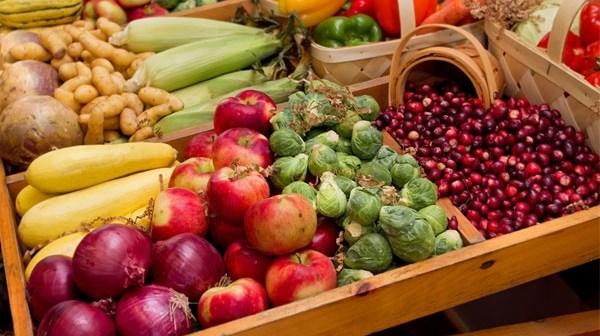 الطعام الذي يقي من السرطان