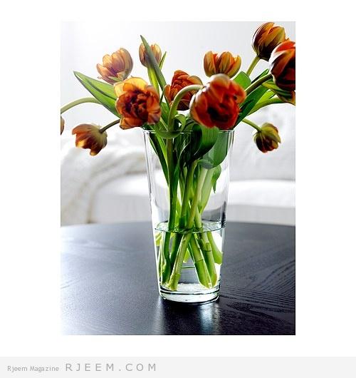 bladet-vas__0121739_PE240128_S4