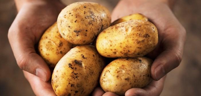 خلطات البطاطا الجمالية