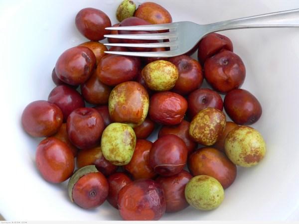 7 فوائد صحية لنبات العناب