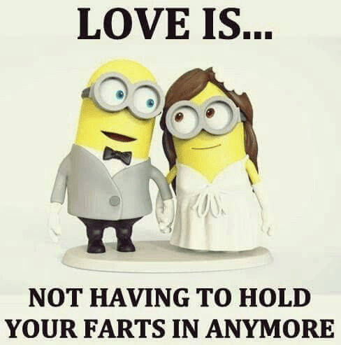 Funny Quotes About Love Is : amazing Valentine Day Minion Quotes Jokes and Pictures - WhatsApp ...