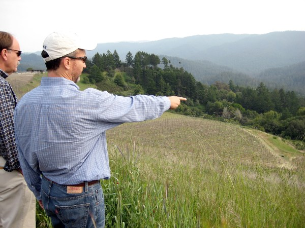 Kevin Harvey surveying one of Rhys's Santa Cruz Mountains vineyards