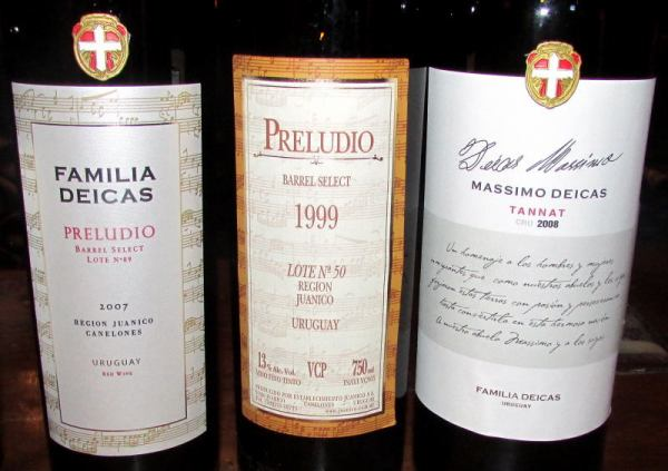 top wines at Juanicó