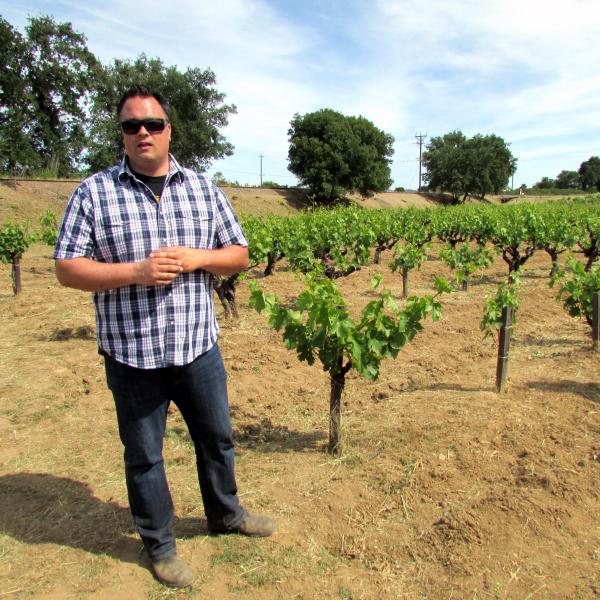 Tegan Passalacqua with newer vines at 101 Vineyard