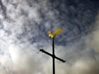 Kruis en haan staan na vele jaren weer te schitteren.