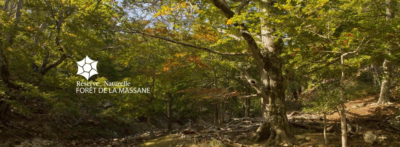 Réserve Naturelle Nationale de la MAssane