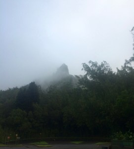 Mountain in the Mist on Pali Pass