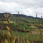 In pursuit of el dorado… – Laguna de Guatavita