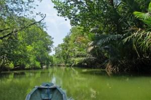 Canoeing down the Cigenter River, Ujung Kulon National Park