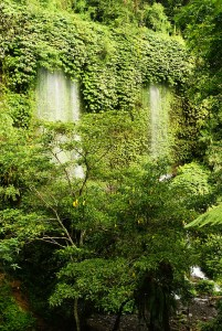Benang Kelambu waterfall, Lombok, Indonesia