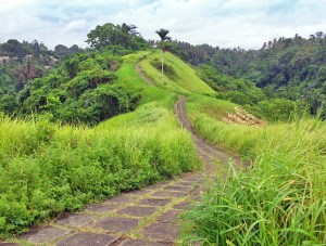 Campuhan ridge walk trail above Ubud, Bali