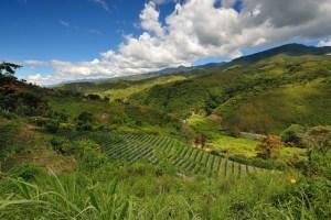 The beautiful Kerinci valley, Sumatra
