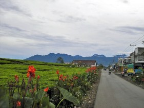 Kersik Tua village with Gunung Tujuh in the background