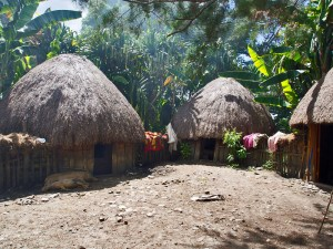 Traditional thatched huts, West Papua, Indonesia