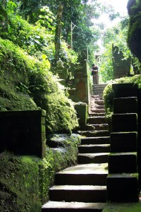 Stairway from one of several shrines along the Petanu Temple trek from Goa Gajah Temple