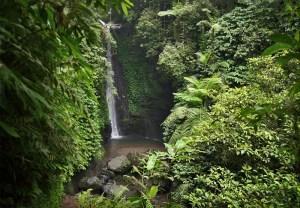 Jeruk Manis Waterfall, Rinjani NP, Lombok