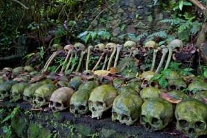 Ancient cemetery at Trunyan Village, Kintamani, Bali