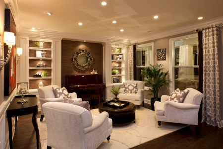 stylish transitional home living room robeson design 2