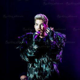Queen, Adam Lambert srf 16-3547