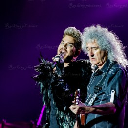 Queen, Adam Lambert srf 16-3554