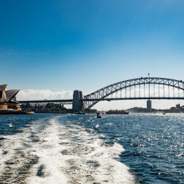 Harbour bridge-2254