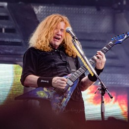 Megadeth srf-16-3375