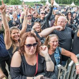 festivallife rockit 17-609310