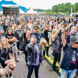 festivallife rockit 17-609635