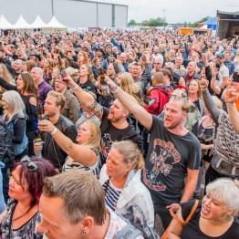 festivallife rockit 17-609750