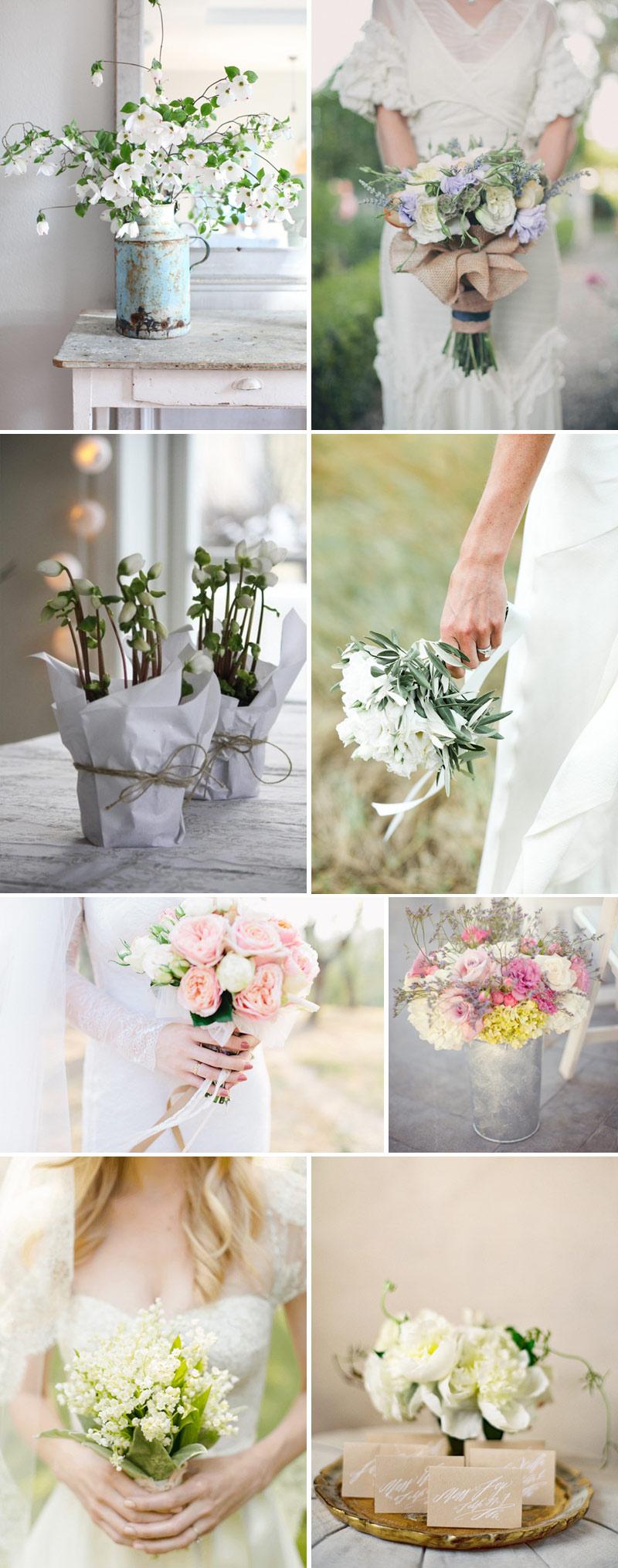 Les Jolies Fleurs En Provence.