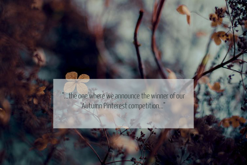 Cover Image quote1 Announcing….our Autumn Pinterest Competition Winner.