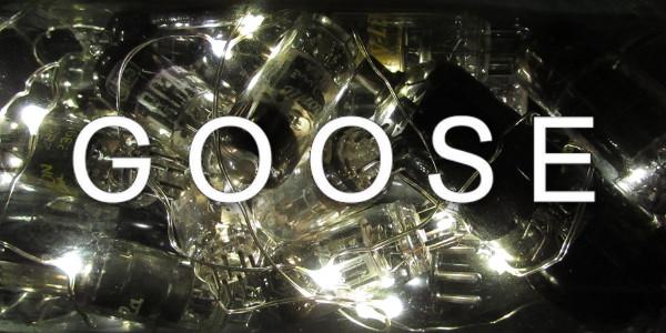 GOOSE_VACUUM_TUBES