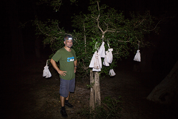 Dr. Burton Lim looking pleased with all the different bats caught at Kumana National Park. Credit: Vincent Luk